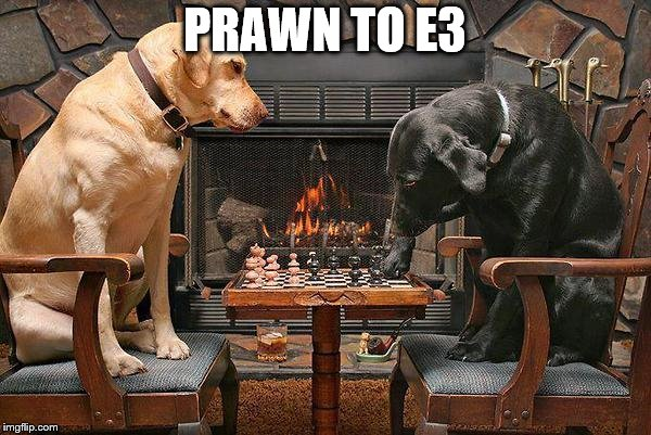 Dogs Playing Chess | PRAWN TO E3 | image tagged in dogs playing chess | made w/ Imgflip meme maker