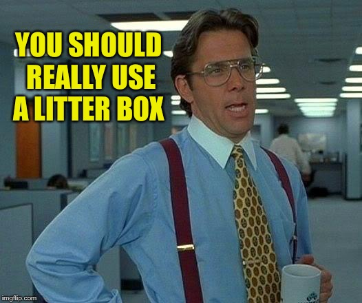 That Would Be Great Meme | YOU SHOULD REALLY USE A LITTER BOX | image tagged in memes,that would be great | made w/ Imgflip meme maker