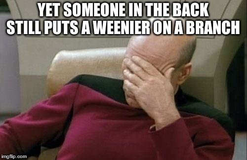 Captain Picard Facepalm Meme | YET SOMEONE IN THE BACK STILL PUTS A WEENIER ON A BRANCH | image tagged in memes,captain picard facepalm | made w/ Imgflip meme maker