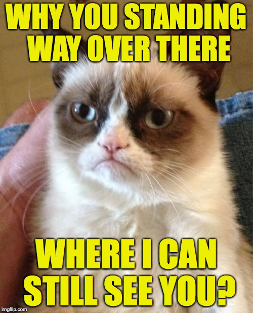 Grumpy Cat Meme | WHY YOU STANDING WAY OVER THERE WHERE I CAN STILL SEE YOU? | image tagged in memes,grumpy cat | made w/ Imgflip meme maker