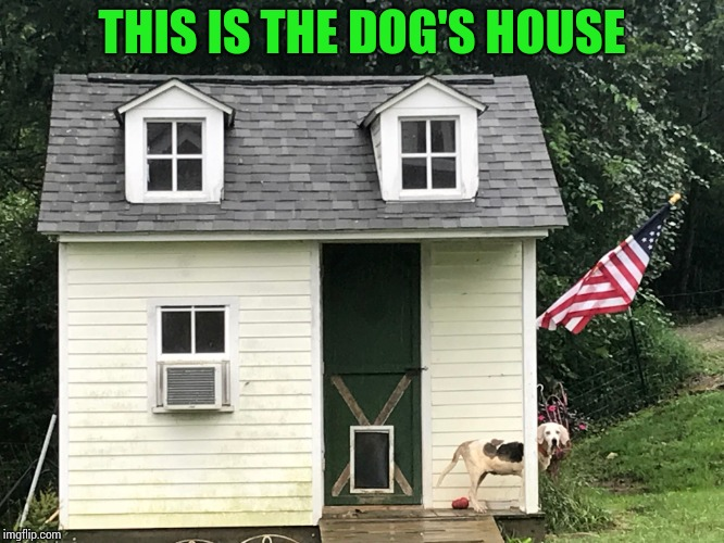 THIS IS THE DOG'S HOUSE | made w/ Imgflip meme maker