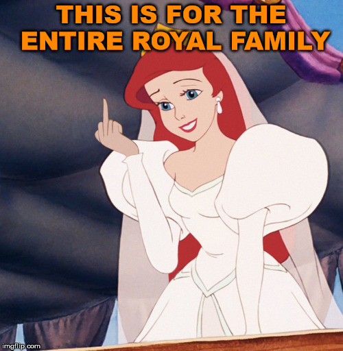 How I feel about royalty as well.  | THIS IS FOR THE ENTIRE ROYAL FAMILY | image tagged in memes,royal family,british royals,flipping off,princess,humor | made w/ Imgflip meme maker