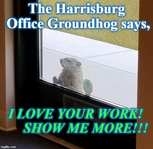 The Harrisburg Office Groundhog says, I LOVE YOUR WORK!      SHOW ME MORE!!! | image tagged in groundhog | made w/ Imgflip meme maker
