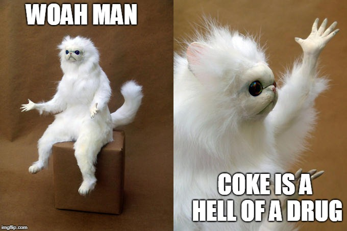 Persian Cat Room Guardian | WOAH MAN COKE IS A HELL OF A DRUG | image tagged in memes,persian cat room guardian | made w/ Imgflip meme maker