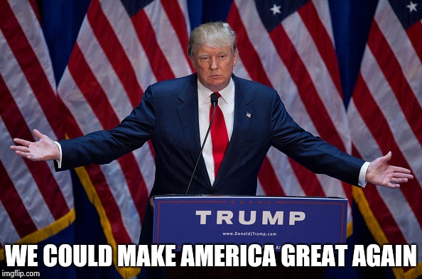 Donald Trump | WE COULD MAKE AMERICA GREAT AGAIN | image tagged in donald trump | made w/ Imgflip meme maker