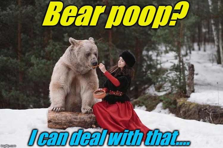 Bear poop? I can deal with that.... | made w/ Imgflip meme maker