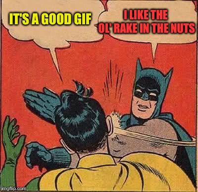 Batman Slapping Robin Meme | IT'S A GOOD GIF I LIKE THE OL' RAKE IN THE NUTS | image tagged in memes,batman slapping robin | made w/ Imgflip meme maker