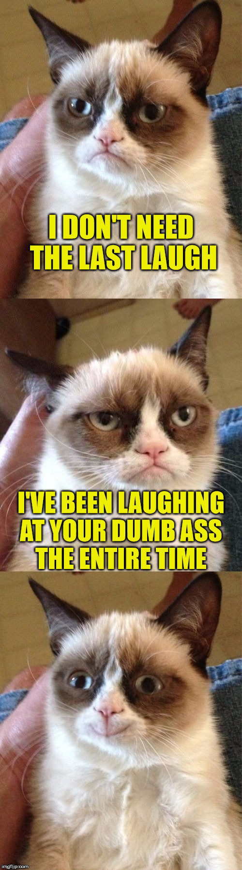 Bad Pun Grumpy Cat | I DON'T NEED THE LAST LAUGH I'VE BEEN LAUGHING AT YOUR DUMB ASS      THE ENTIRE TIME | image tagged in bad pun grumpy cat,memes,laugh | made w/ Imgflip meme maker
