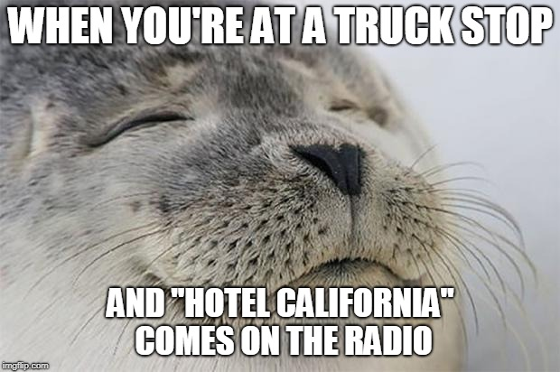 "Satisfied Seal Meme | WHEN YOU'RE AT A TRUCK STOP AND ""HOTEL CALIFORNIA"" COMES ON THE RADIO 