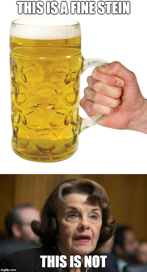 THIS IS A FINE STEIN THIS IS NOT | image tagged in memes,funny memes | made w/ Imgflip meme maker