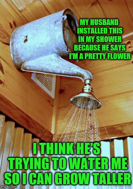 Still a cute idea | MY HUSBAND INSTALLED THIS IN MY SHOWER BECAUSE HE SAYS I'M A PRETTY FLOWER I THINK HE'S TRYING TO WATER ME SO I CAN GROW TALLER | image tagged in meme,redneck shower,shower,diy fails,memes | made w/ Imgflip meme maker