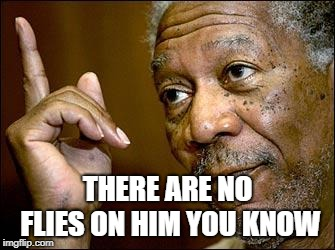 This Morgan Freeman | THERE ARE NO FLIES ON HIM YOU KNOW | image tagged in this morgan freeman | made w/ Imgflip meme maker