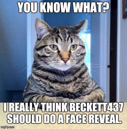 The people have spoken. Beckett, it needs to be done. | YOU KNOW WHAT? I REALLY THINK BECKETT437 SHOULD DO A FACE REVEAL. | image tagged in memes,funny,serious cat,beckett437 | made w/ Imgflip meme maker