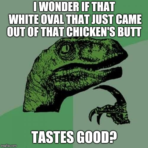 Philosoraptor Meme | I WONDER IF THAT WHITE OVAL THAT JUST CAME OUT OF THAT CHICKEN'S BUTT TASTES GOOD? | image tagged in memes,philosoraptor | made w/ Imgflip meme maker