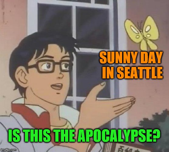 165e583db5 SUNNY DAY IN SEATTLE IS THIS THE APOCALYPSE