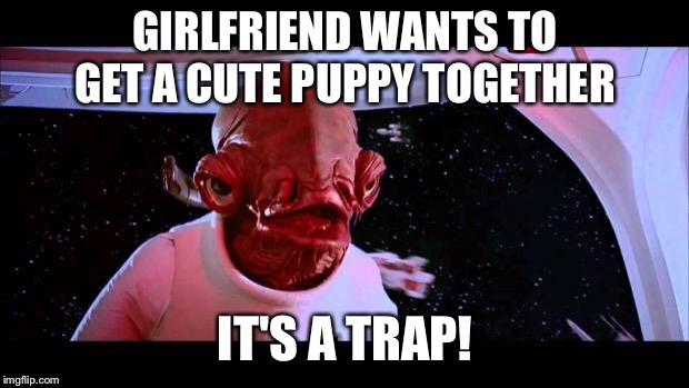 Puppy trap | GIRLFRIEND WANTS TO GET A CUTE PUPPY TOGETHER IT'S A TRAP! | image tagged in it's a trap,girlfriend,puppy | made w/ Imgflip meme maker