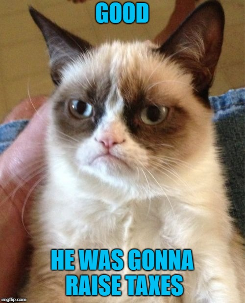 Grumpy Cat Meme | GOOD HE WAS GONNA RAISE TAXES | image tagged in memes,grumpy cat | made w/ Imgflip meme maker
