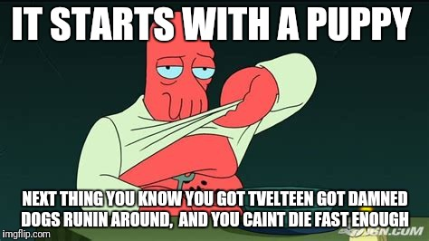 Zoidberg  | IT STARTS WITH A PUPPY NEXT THING YOU KNOW YOU GOT TVELTEEN GOT DAMNED DOGS RUNIN AROUND,  AND YOU CAINT DIE FAST ENOUGH | image tagged in zoidberg | made w/ Imgflip meme maker