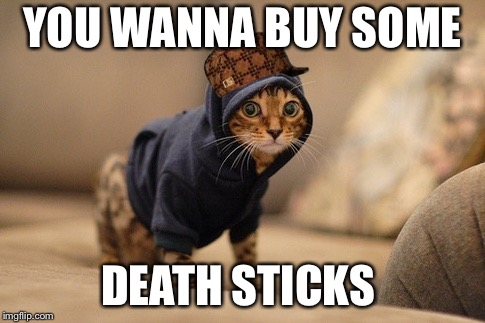 Hoody Cat Meme | YOU WANNA BUY SOME DEATH STICKS | image tagged in memes,hoody cat,scumbag | made w/ Imgflip meme maker