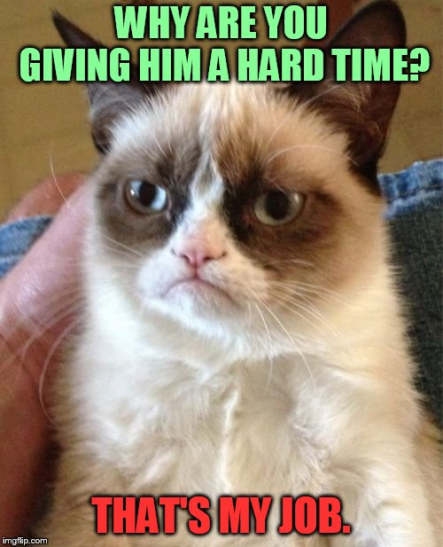 Grumpy Cat Meme | WHY ARE YOU GIVING HIM A HARD TIME? THAT'S MY JOB. | image tagged in memes,grumpy cat | made w/ Imgflip meme maker