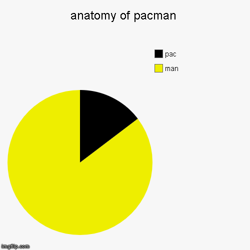 anatomy of pacman | man, pac | image tagged in funny,pie charts | made w/ Imgflip chart maker