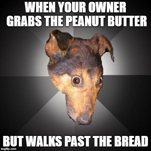 Depression Dog |  WHEN YOUR OWNER GRABS THE PEANUT BUTTER; BUT WALKS PAST THE BREAD | image tagged in memes,depression dog | made w/ Imgflip meme maker