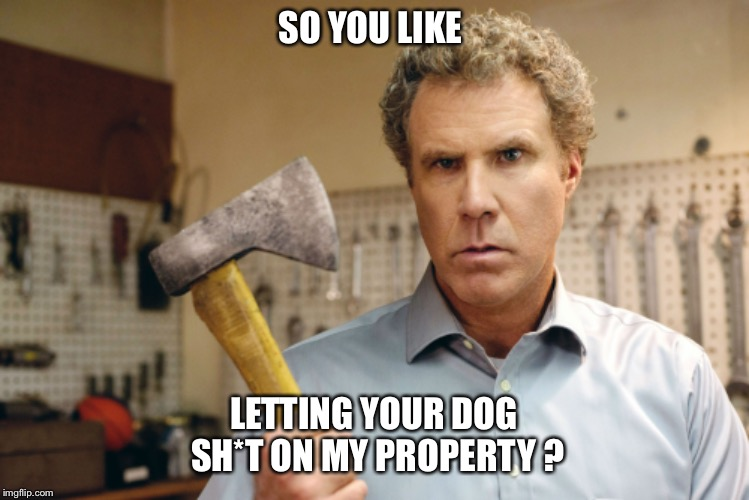 SO YOU LIKE; LETTING YOUR DOG SH*T ON MY PROPERTY ? | image tagged in will ferrell,angry,dog,dog poop,axe,dog owners | made w/ Imgflip meme maker