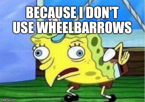 Mocking Spongebob Meme | BECAUSE I DON'T USE WHEELBARROWS | image tagged in memes,mocking spongebob | made w/ Imgflip meme maker