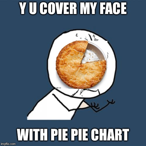 Y U No Meme | Y U COVER MY FACE WITH PIE PIE CHART | image tagged in memes,y u no | made w/ Imgflip meme maker