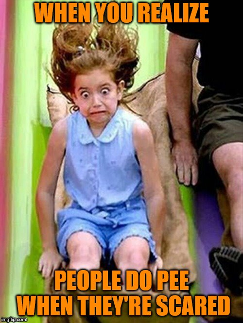 It's nice that this moment was forever captured | WHEN YOU REALIZE PEOPLE DO PEE WHEN THEY'RE SCARED | image tagged in way too fast,memes,scared,peeing | made w/ Imgflip meme maker