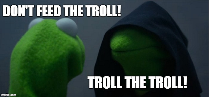 Troll trolling can be fun | DON'T FEED THE TROLL! TROLL THE TROLL! | image tagged in memes,evil kermit,trolling | made w/ Imgflip meme maker