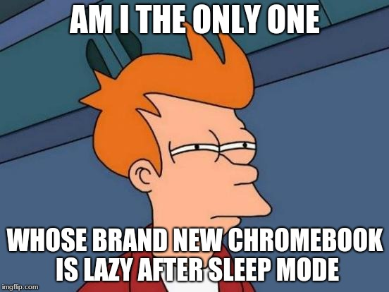 Like when you first move in with somebody and realize they ain't a morning person at all... | AM I THE ONLY ONE WHOSE BRAND NEW CHROMEBOOK IS LAZY AFTER SLEEP MODE | image tagged in memes,futurama fry,lazy,ass,computer | made w/ Imgflip meme maker