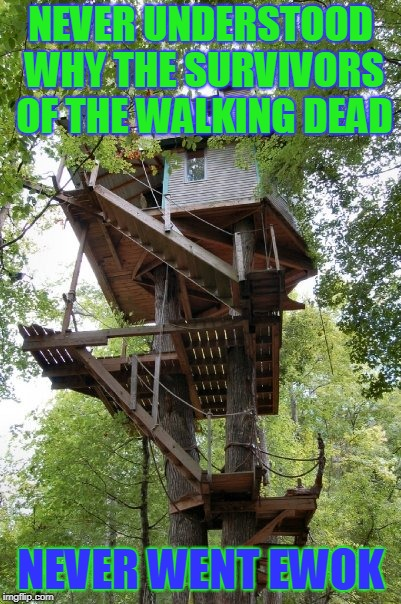 Walking Dead | NEVER UNDERSTOOD WHY THE SURVIVORS OF THE WALKING DEAD NEVER WENT EWOK | image tagged in the walking dead,ewok | made w/ Imgflip meme maker