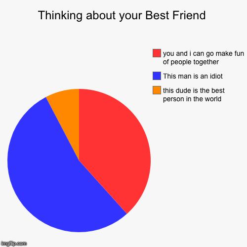 Thinking about your best friend | Thinking about your Best Friend | this dude is the best person in the world, This man is an idiot, you and i can go make fun of people toget | image tagged in funny,pie charts,guys,best friend | made w/ Imgflip chart maker