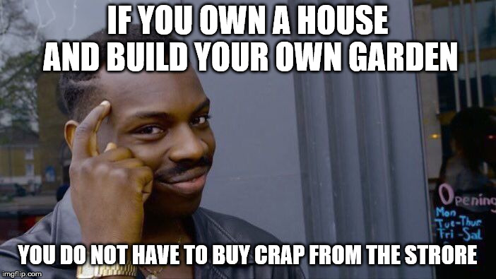 Roll Safe Think About It Meme | IF YOU OWN A HOUSE AND BUILD YOUR OWN GARDEN YOU DO NOT HAVE TO BUY CRAP FROM THE STRORE | image tagged in memes,roll safe think about it | made w/ Imgflip meme maker