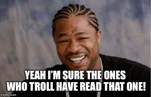 Yo Dawg Heard You Meme | YEAH I'M SURE THE ONES WHO TROLL HAVE READ THAT ONE! | image tagged in memes,yo dawg heard you | made w/ Imgflip meme maker