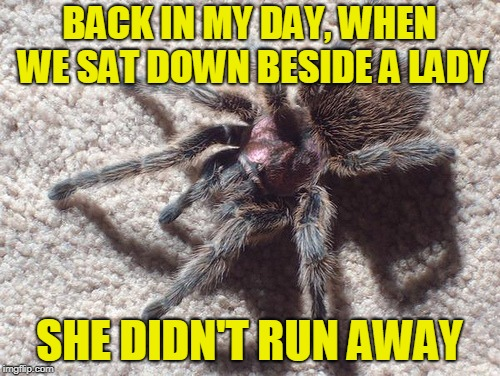 BACK IN MY DAY, WHEN WE SAT DOWN BESIDE A LADY SHE DIDN'T RUN AWAY | made w/ Imgflip meme maker