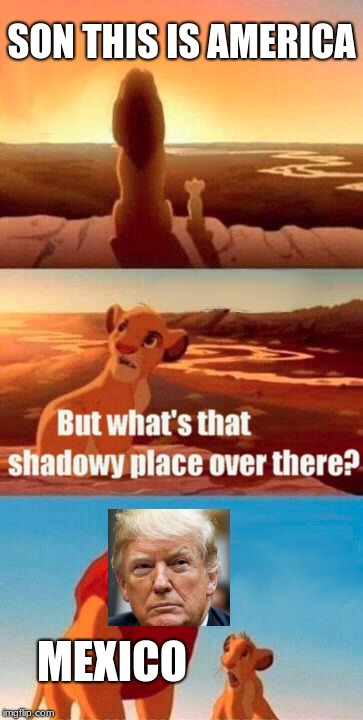 Simba Shadowy Place Meme | SON THIS IS AMERICA MEXICO | image tagged in memes,simba shadowy place | made w/ Imgflip meme maker