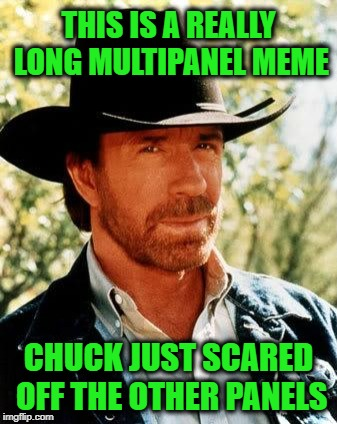 You should have seen it! |  THIS IS A REALLY LONG MULTIPANEL MEME; CHUCK JUST SCARED OFF THE OTHER PANELS | image tagged in memes,chuck norris,multipanel,long,really long | made w/ Imgflip meme maker
