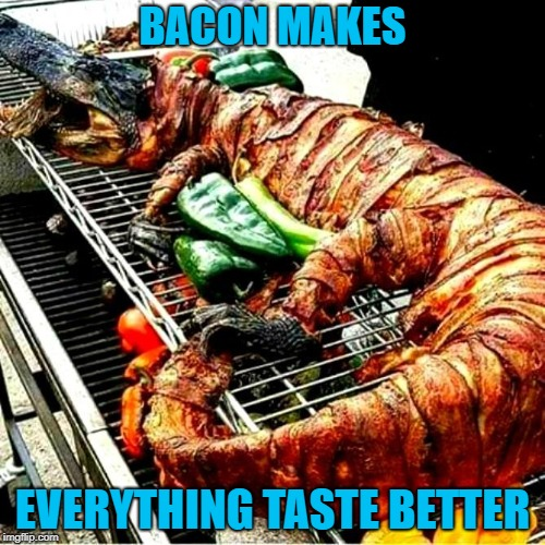 That's some Swamp People shit right there!!! | BACON MAKES EVERYTHING TASTE BETTER | image tagged in bacon wrapped alligator,memes,bacon,funny,alligators,bbq | made w/ Imgflip meme maker