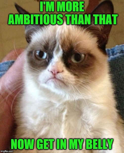 Grumpy Cat Meme | I'M MORE AMBITIOUS THAN THAT NOW GET IN MY BELLY | image tagged in memes,grumpy cat | made w/ Imgflip meme maker