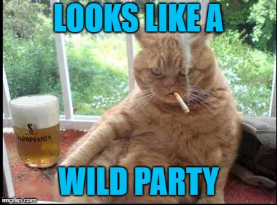 LOOKS LIKE A WILD PARTY | made w/ Imgflip meme maker