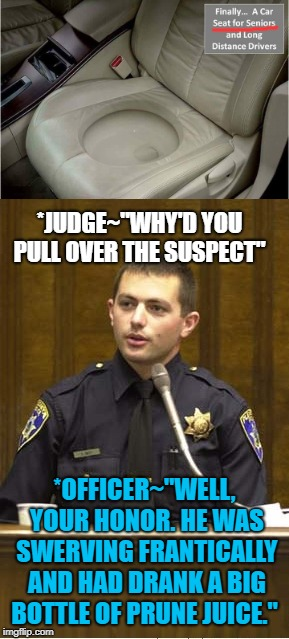 "DWD...Driving While Defecating  | *JUDGE~""WHY'D YOU PULL OVER THE SUSPECT"" *OFFICER~""WELL, YOUR HONOR. HE WAS SWERVING FRANTICALLY AND HAD DRANK A BIG BOTTLE OF PRUNE JUICE."" 