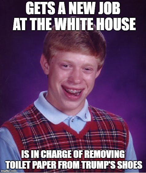 Congratulations? |  GETS A NEW JOB AT THE WHITE HOUSE; IS IN CHARGE OF REMOVING TOILET PAPER FROM TRUMP'S SHOES | image tagged in memes,bad luck brian,trump,republicans,white house | made w/ Imgflip meme maker