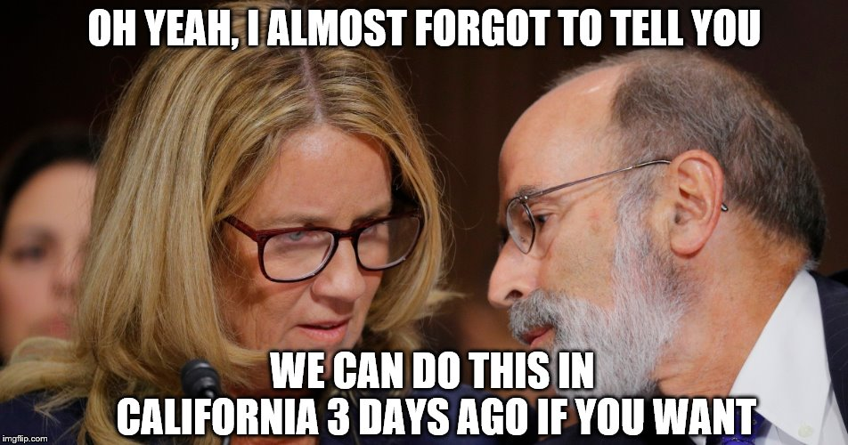 Where we're going.... we don't need truth | OH YEAH, I ALMOST FORGOT TO TELL YOU WE CAN DO THIS IN CALIFORNIA 3 DAYS AGO IF YOU WANT | image tagged in christine ford,back to the future | made w/ Imgflip meme maker