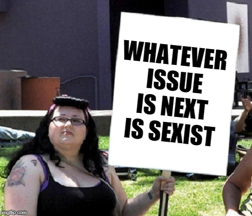 Protesting Feminist | WHATEVER ISSUE IS NEXT IS SEXIST | image tagged in protesting feminist | made w/ Imgflip meme maker