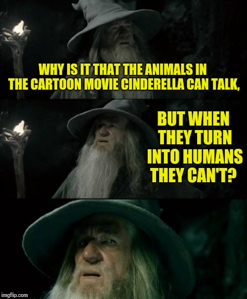 Confused Gandalf Meme | WHY IS IT THAT THE ANIMALS IN THE CARTOON MOVIE CINDERELLA CAN TALK, BUT WHEN THEY TURN INTO HUMANS THEY CAN'T? | image tagged in memes,confused gandalf | made w/ Imgflip meme maker