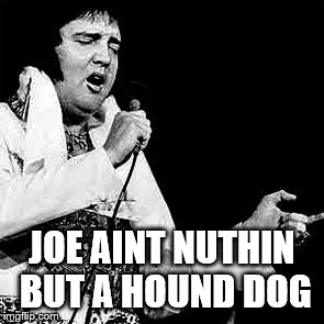 fat elvis | JOE AINT NUTHIN BUT A HOUND DOG | image tagged in fat elvis | made w/ Imgflip meme maker
