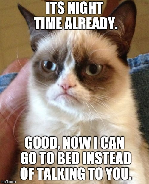 Grumpy Cat Hates You (Grumpy Cat Weekend) | ITS NIGHT TIME ALREADY. GOOD, NOW I CAN GO TO BED INSTEAD OF TALKING TO YOU. | image tagged in memes,grumpy cat,grumpy cat weekend | made w/ Imgflip meme maker
