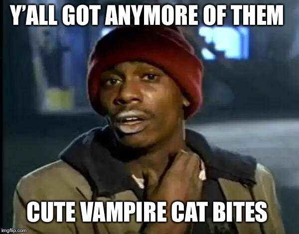 Y'all Got Any More Of That Meme | Y'ALL GOT ANYMORE OF THEM CUTE VAMPIRE CAT BITES | image tagged in memes,y'all got any more of that | made w/ Imgflip meme maker